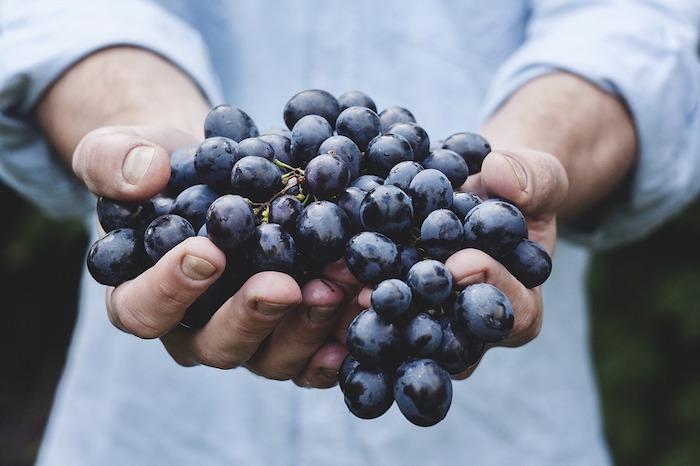 Cure minceur de raisin.